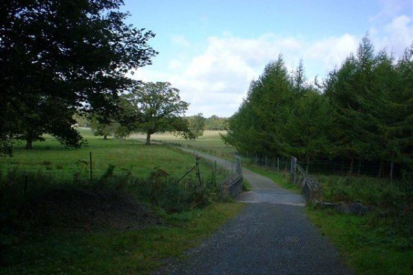 Gosford Forest Walking Trail