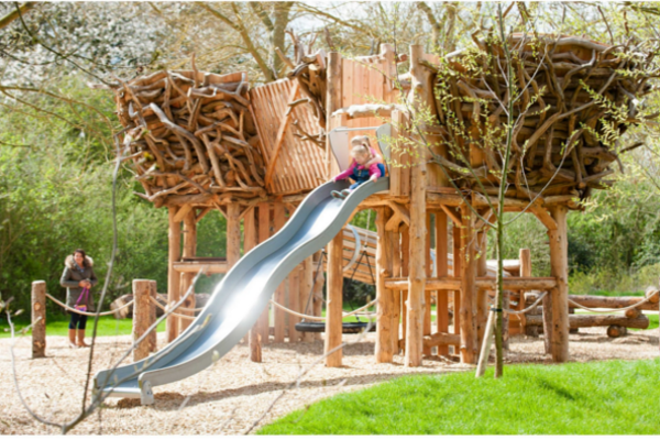 Gosford Forest – Adventure Play Trail Public Consultation Session