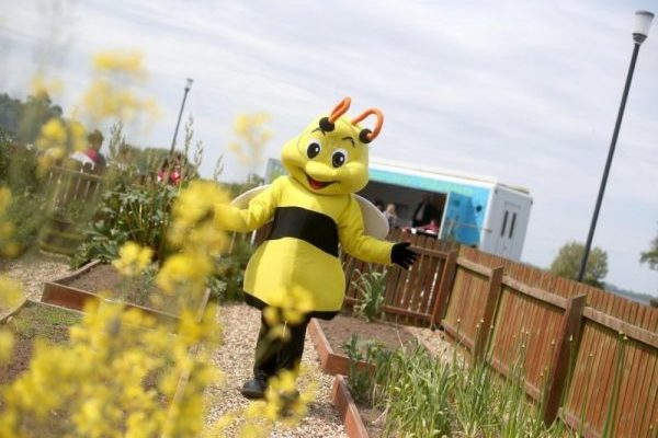 Oxford Island's buzzingly brilliant 'Bee Curious' event is back!